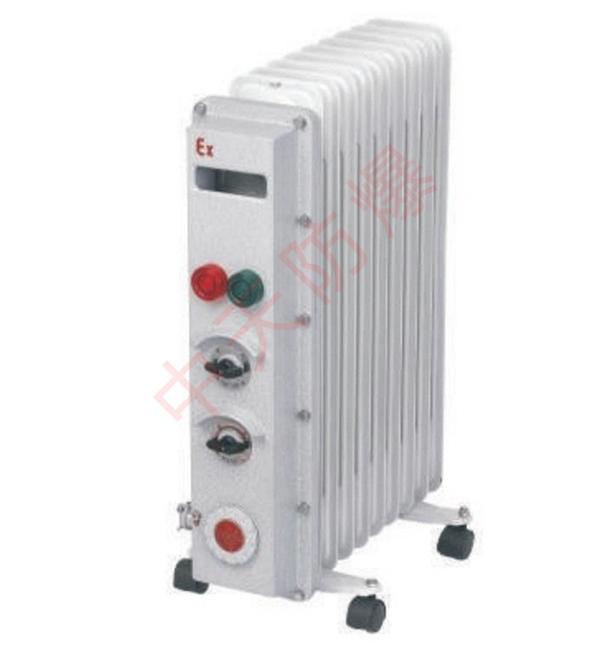 NSBR65-系列防爆電熱油汀